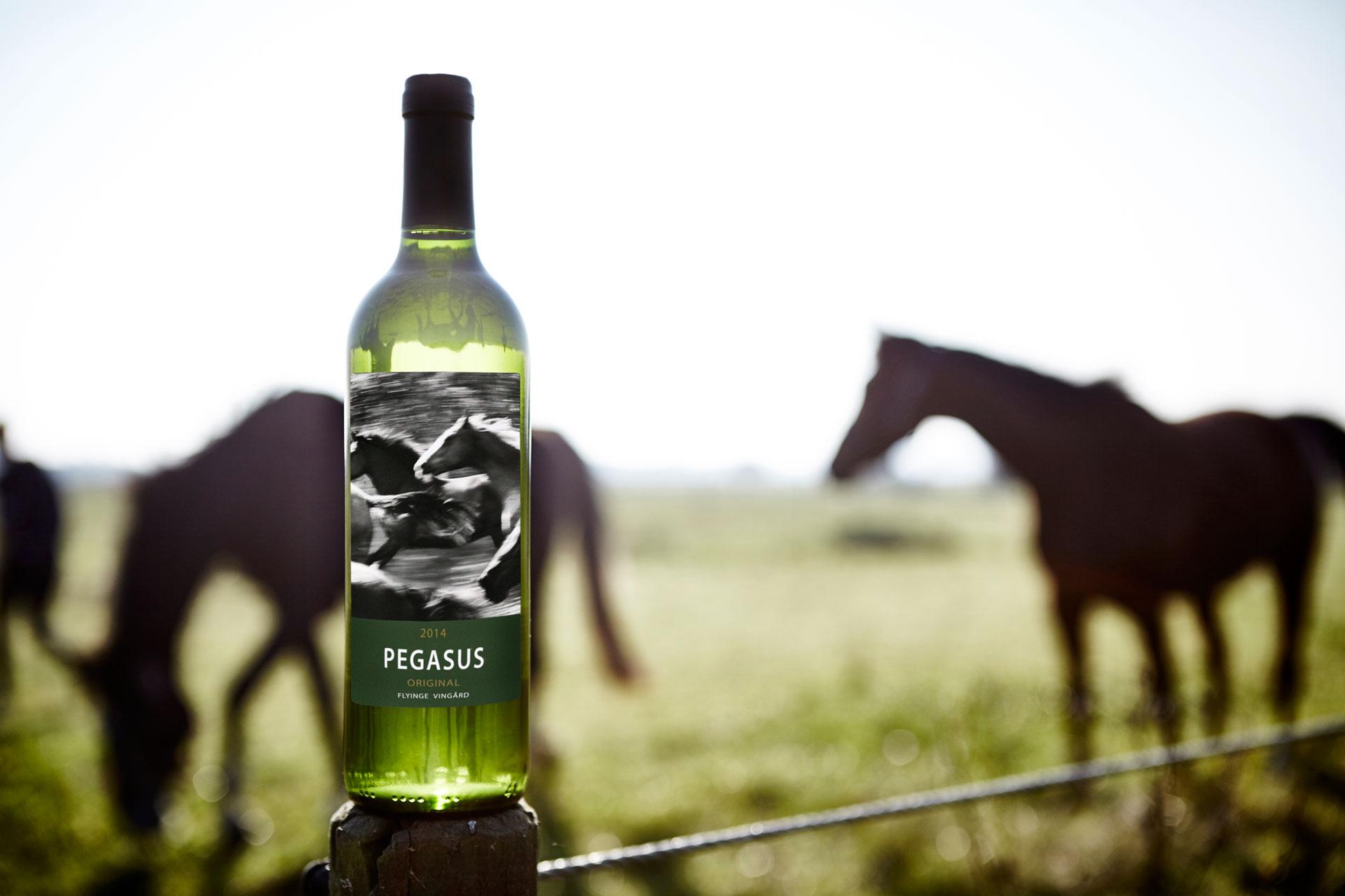 Flyinge Vingård-Pegasus. Bilden hämtad från deras hemsida.